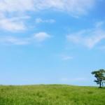 夏の札幌は過ごしやすいの?7月の気温は?8月は?