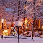 札幌の冬は住みやすいの ?物価は安いの?ゴミは有料?